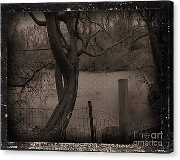 In The Times Of The Hanging Trees Canvas Print by Roxy Riou