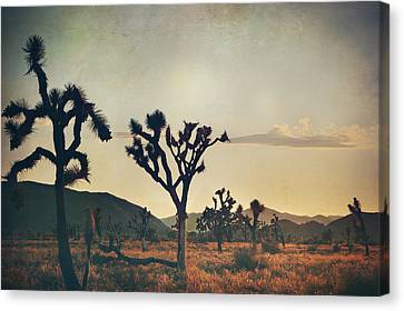 In Your Arms As The Sun Goes Down Canvas Print by Laurie Search
