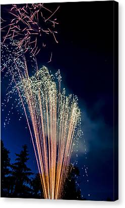 Independence Day 2014 16 Canvas Print by Alan Marlowe