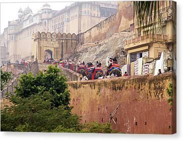 India, Rajasthan, Jaipur, Ride Canvas Print by Emily Wilson