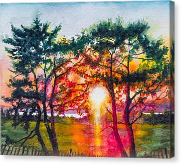 Indian River Sunset Canvas Print by Patricia Allingham Carlson