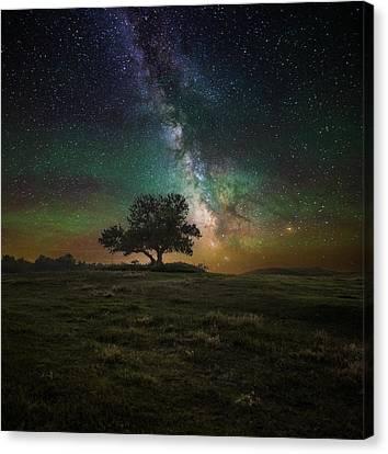 Infinity Canvas Print by Aaron J Groen