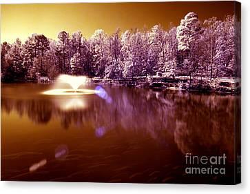Infrared Study #242 Canvas Print by Floyd Menezes