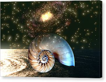 Inner Space Outer Space Canvas Print by Lisa Yount