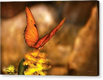 Insect - Butterfly - Just A Bit Of Orange  Canvas Print by Mike Savad