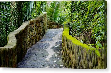 Into The Jungle Canvas Print by Aged Pixel