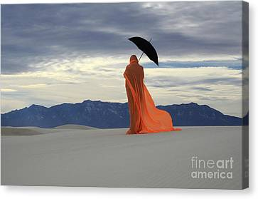 Into The Mystic 5 Canvas Print by Bob Christopher