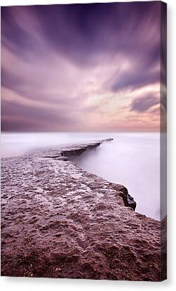 Into The Ocean Canvas Print by Jorge Maia