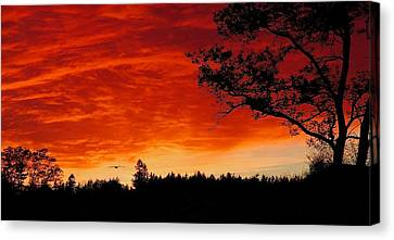 Into The Sunset Canvas Print by Stuart Litoff