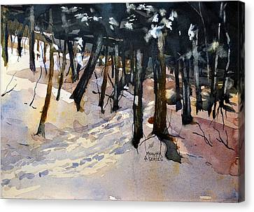 Into The Woods Canvas Print by Spencer Meagher