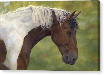 Intrigued Canvas Print by Lucie Bilodeau