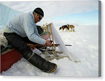 Inuit Hunter With Rifle And Hunting Blind Canvas Print by Louise Murray
