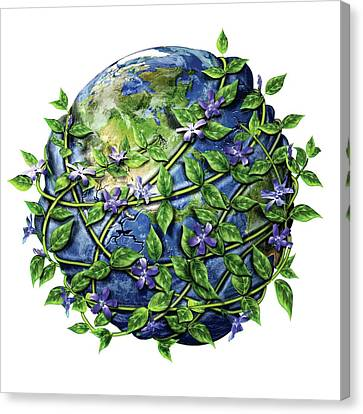 Invasive Plants Canvas Print by Nicolle R. Fuller