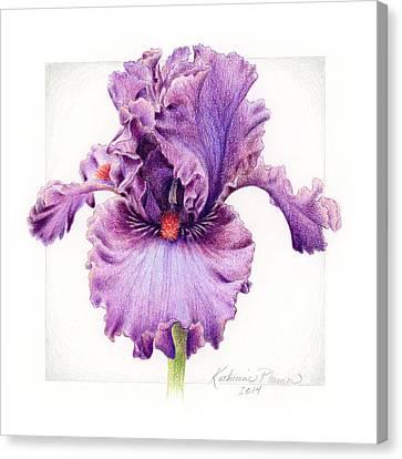 Iris 1 Asian Plum Canvas Print by Katherine Plumer