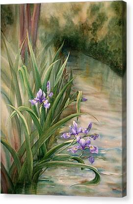 Iris Over The Inlet Canvas Print by Johanna Axelrod