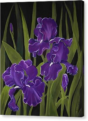 Irises Canvas Print by Anastasiya Malakhova
