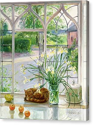 Irises And Sleeping Cat Canvas Print by Timothy Easton