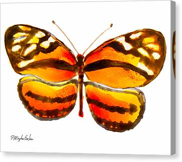 Isabella Butterfly Canvas Print by Patricia Allingham Carlson