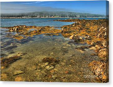 Isle Au Haut Beach Canvas Print by Adam Jewell
