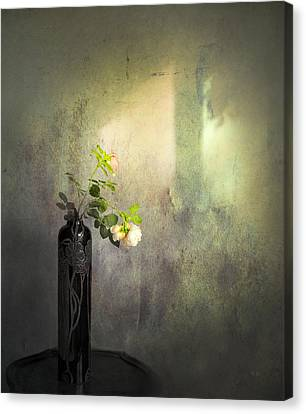 Isn't It Romantic Canvas Print by Theresa Tahara