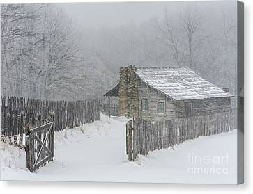 Weathering Canvas Print by Anthony Heflin