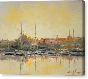 Istanbul- Hagia Sophia Canvas Print by Luke Karcz