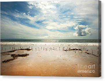 It Was A Sunny Day At The Beach From The Book My Ocean Canvas Print by Artist and Photographer Laura Wrede