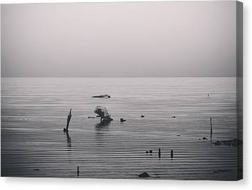 It Was Lonely There Canvas Print by Laurie Search