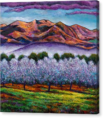 Italian Orchard Canvas Print by Johnathan Harris