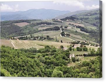 Italian Vineyards Canvas Print by Nancy Ingersoll