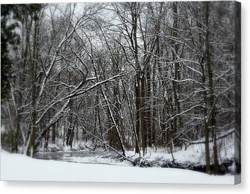 Its A Beautiful Winter Canvas Print by Kay Novy