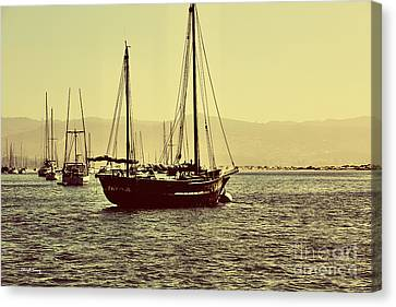 Its A Sailors Life Canvas Print by Cheryl Young