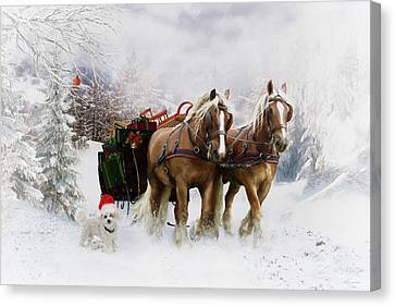 A Christmas Wish Canvas Print by Shanina Conway