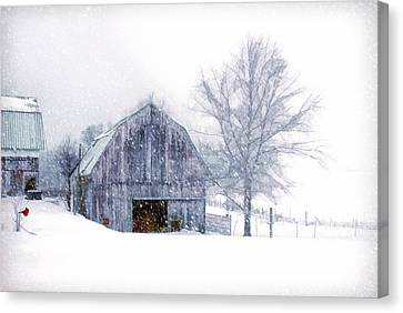 It's Cold Outside Canvas Print by Mary Timman