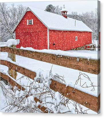 It's Snowing Square Canvas Print by Bill Wakeley