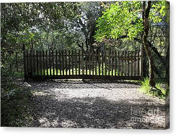 Jack London Grave Site 5d21982 Canvas Print by Wingsdomain Art and Photography
