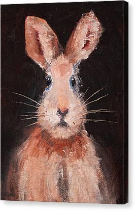 Jack Rabbit Canvas Print by Nancy Merkle
