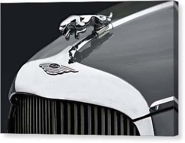 Jaguar Mk Ix Hood Canvas Print by Susan Candelario
