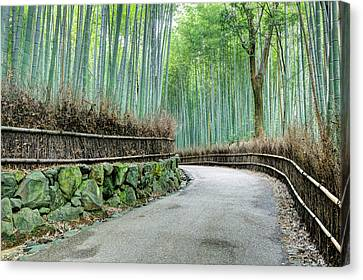 Japan, Kyoto Road Canvas Print by Jaynes Gallery