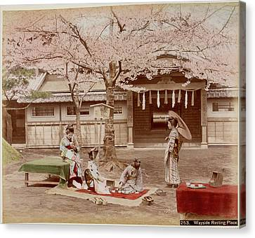Japanese Building And A Cherry Tree Canvas Print by British Library