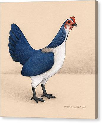Jay Hen Canvas Print by Katherine Plumer