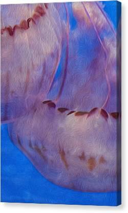 Jellies Canvas Print by Jack Zulli