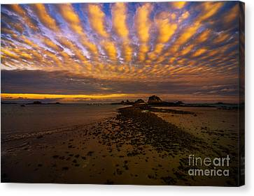 Jersey Sky  Canvas Print by Rob Hawkins