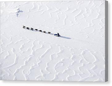 John Bakers Team Running Down Frozen Yukon River  Canvas Print by Jeff Schultz