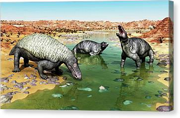 Jonkeria Therapsids Canvas Print by Walter Myers