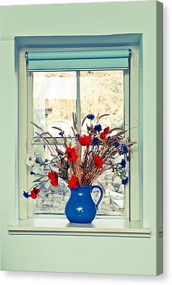 Jug Of Flowers Canvas Print by Tom Gowanlock