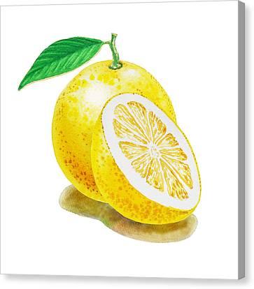Juicy Grapefruit Canvas Print by Irina Sztukowski