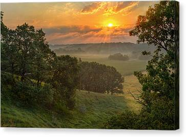 July Morning Along The Ridge Canvas Print by Bruce Morrison