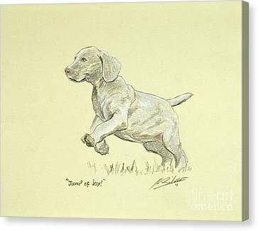 Jump Of Joy Canvas Print by John Silver