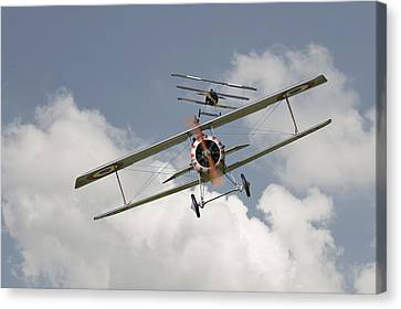 Jumped Canvas Print by Pat Speirs